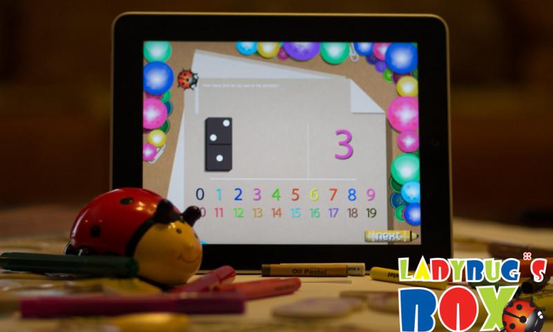 LadybugBox1